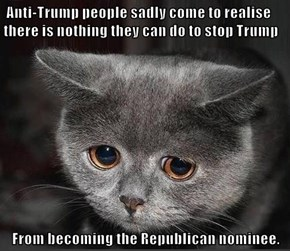 Anti-Trump people sadly come to realise there is nothing they can do to stop Trump  From becoming the Republican nominee.