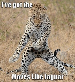 I've got the  Moves Like Jaguar