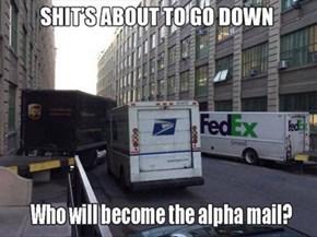 Battle of the Postmen