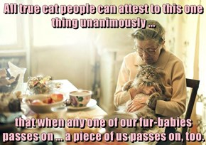 All true cat people can attest to this one thing unanimously ...  that when any one of our fur-babies passes on ... a piece of us passes on, too.