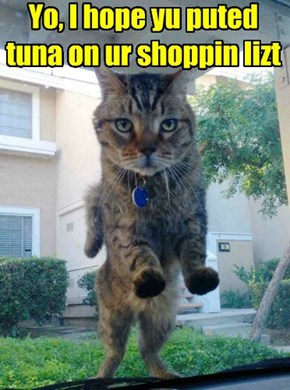 Yo, I hope yu puted tuna on ur shoppin lizt