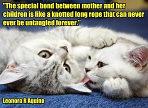 """The special bond"""