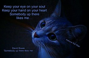 Keep your eye on your soul      Keep your hand on your heart      Somebody up there      likes me....