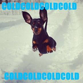 COLDCOLDCOLDCOLD  COLDCOLDCOLDCOLD