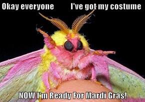 Okay everyone           I've got my costume  NOW I'm Ready For Mardi Gras!