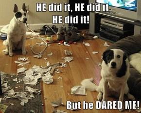 HE did it, HE did it,                                                                    HE did it!  But he DARED ME!
