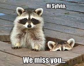 Dear Sylvia,