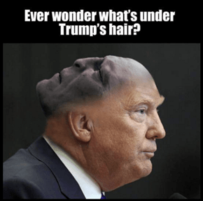 Why Do You Think He Insists on Doing His Own Hair?