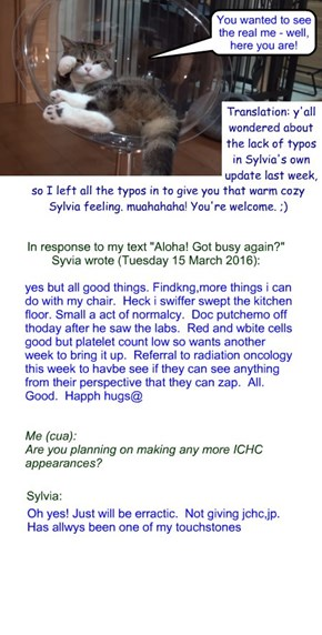 "Sylvia update, Tuesday 15 March 2016: ""for Sylvia's dedicated fans"""