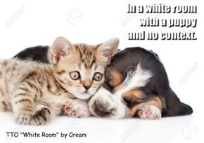"""TTO """"White Room"""" by Cream"""
