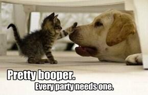 Pretty booper.