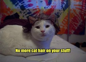 No more cat hair on your stuff!