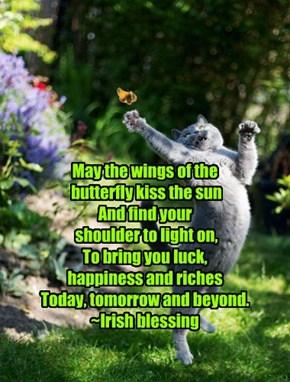 Irish Blessing!