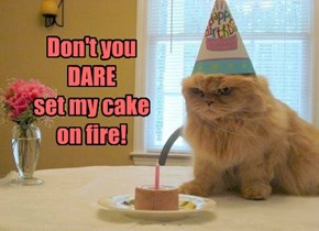Don't you  DARE  set my cake on fire!