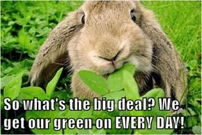 So what's the big deal? We get our green on EVERY DAY!