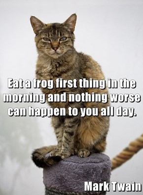 Eat a frog first thing in the morning and nothing worse can happen to you all day. Mark Twain