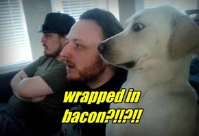 wrapped in bacon?!!?!!