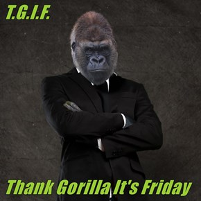 T.G.I.F.  Thank Gorilla It's Friday