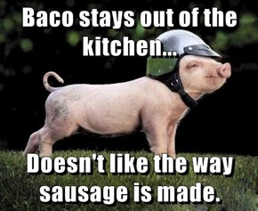 Baco stays out of the kitchen...  Doesn't like the way sausage is made.