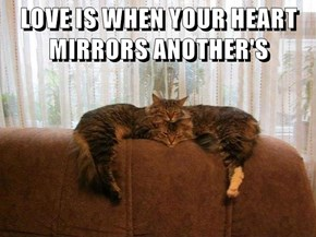 LOVE IS WHEN YOUR HEART MIRRORS ANOTHER'S