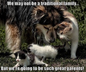We may not be a traditional family...  But we're going to be such great parents!