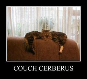 COUCH CERBERUS