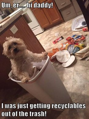 Um, er..... hi daddy!  I was just getting recyclables out of the trash!