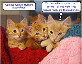 """Cats Do Control Humans, Study Finds"" http://m.livescience.com/5556-cats-control-humans-study-finds.html"