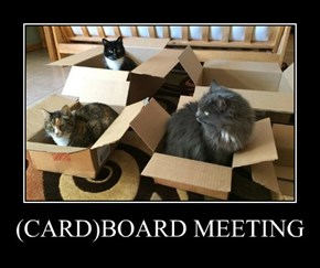 (CARD)BOARD MEETING