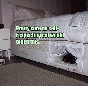 Dog bed inside a mattress.