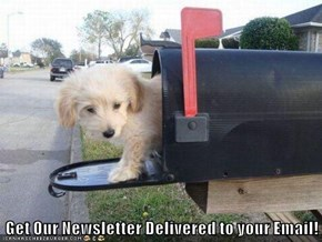Get Our Newsletter Delivered to your Email!