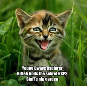 KKPS Nip Garden