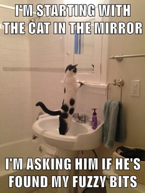 I'M STARTING WITH THE CAT IN THE MIRROR  I'M ASKING HIM IF HE'S FOUND MY FUZZY BITS