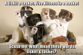 A tiskit a tasket, Five kittens in a basket  'Scuse me. What mean these words,          tisket & tasket?