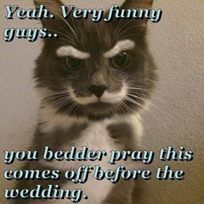 Yeah. Very funny guys..  you bedder pray this comes off before the wedding.