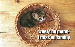 whers mi mom? i miss mi fambly
