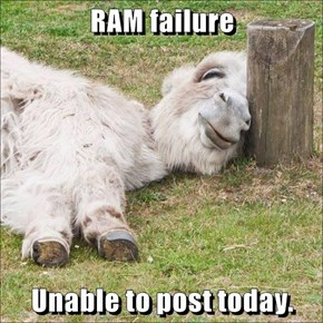 RAM failure  Unable to post today.