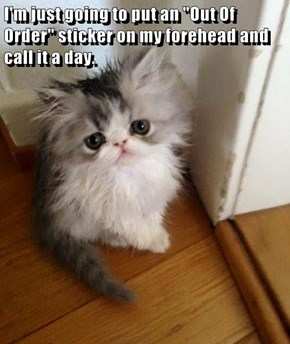 """I'm just going to put an """"Out Of Order"""" sticker on my forehead and call it a day."""