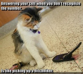 Answering your cell when you don't recognize the number,,  Is like picking up a hitchhiker.