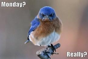 Monday?  Really?