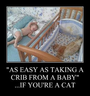 """AS EASY AS TAKING A CRIB FROM A BABY"" ...IF YOU'RE A CAT"