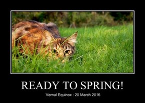 READY TO SPRING!