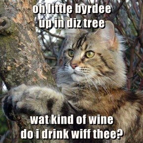 oh little byrdee                                         up in diz tree  wat kind of wine                                           do i drink wiff thee?