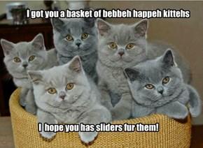 Happy Birfdai, Nawty Kitty!