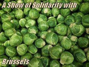 A Show of Solidarity with   Brussels