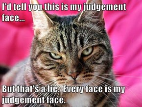 I'd tell you this is my judgement face...  But that's a lie.  Every face is my judgement face.