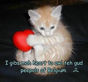 I gibs mah heart to awl teh gud peepols of Belgium.
