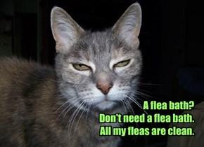 A flea bath? Don't need a flea bath. All my fleas are clean.