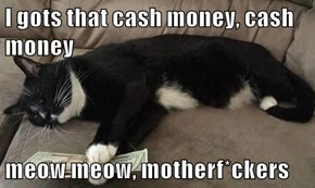 I gots that cash money, cash money  meow meow, motherf*ckers