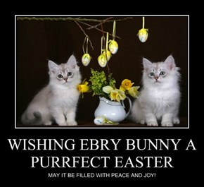 WISHING EBRY BUNNY A PURRFECT EASTER